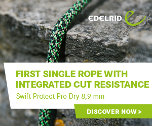 Edelrid Swift Protect Pro Dry